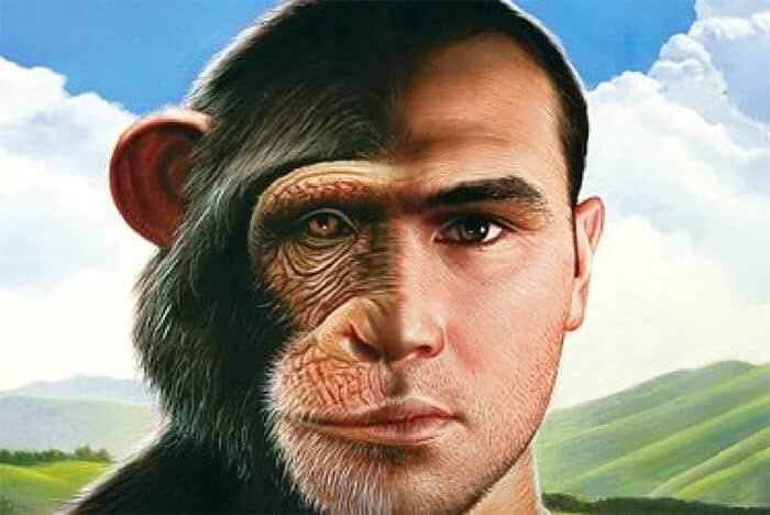 homini_aggressivi rabbia COME GESTIRE LA RABBIA ALTRUI homini aggressivi
