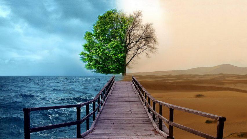 emozionale MODELLAMENTO EMOZIONALE realt   diverse