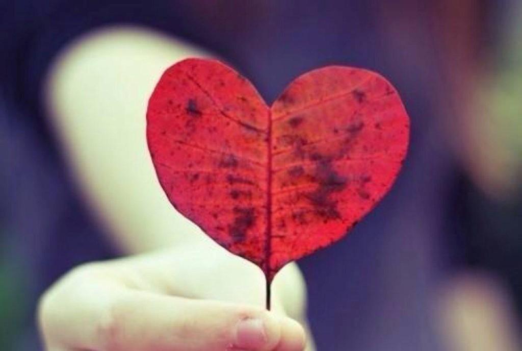profilo-emozionale amore COSA NON FARE IN AMORE profilo emozionale 1024x688