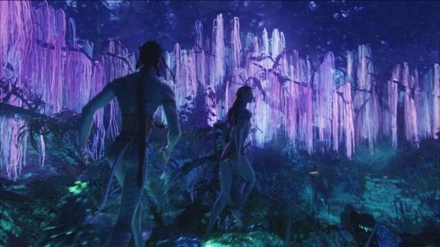 albero della vita il se' universale Il se' universale albero della vita