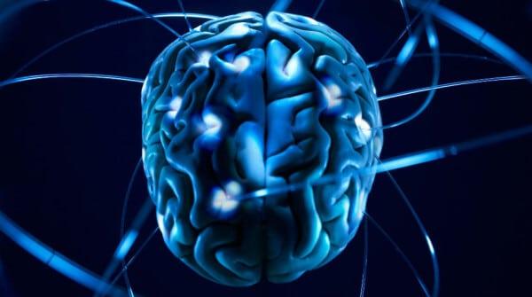news_su_mente_e_cervello_ il se' universale Il se' universale news su mente e cervello